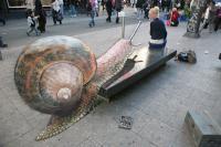 Гигантская улитка в Нью-Йорке