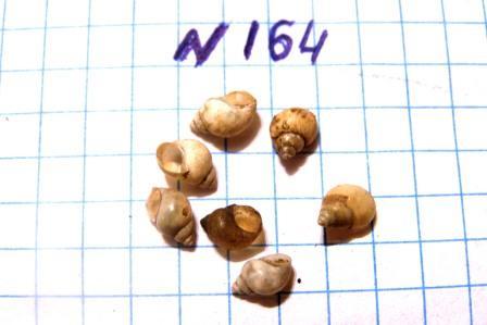 PB020440.JPG