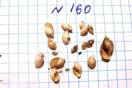 PB020445.JPG
